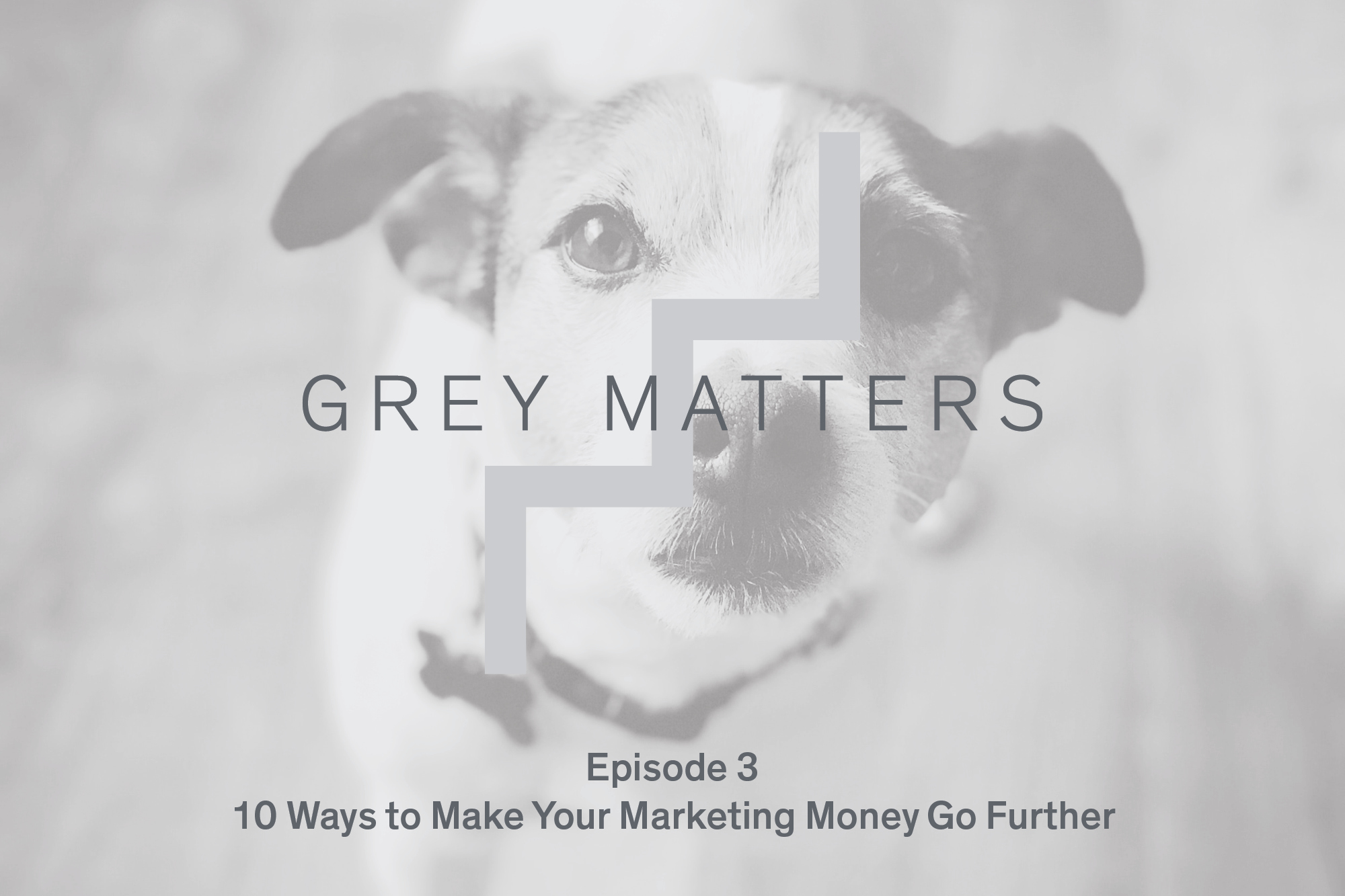 Grey Matters Podcast Ep3 2000X1333